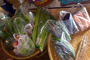 野菜は無農薬、減農薬